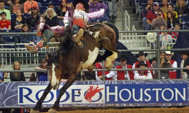 RodeoHouston Sees Slight Uptick in Attendance