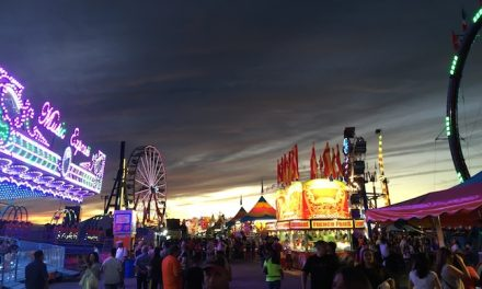 A VIEW FROM THE FAIR